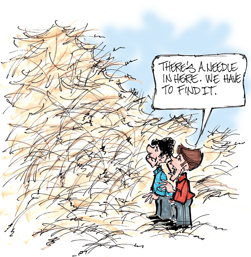 A Needle In A Haystack How To Make Your Resume Standout