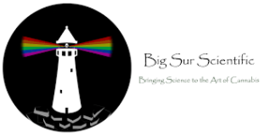 Logo Big Sur Scientific